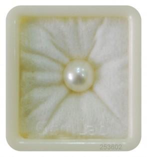 Pearl 4.8 Carats